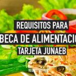Requisitos Tarjeta Junaeb Beca de Alimentación